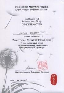 сертификат ВЗ проф конс 001 - копия