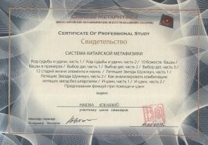 сертификат ВЗ 002 - копия